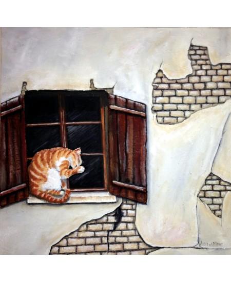 Kat in Venster